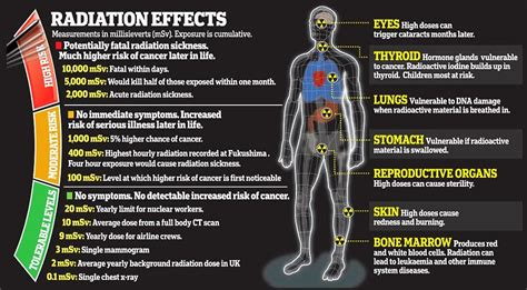 what is one common source of background radiation health and radiation fukushima health effects