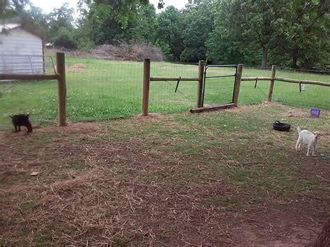 backyard herds ideas on fence corners anyone page 5 backyardherds com
