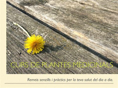 curs de feminisme per 8416154864 programa del curso de plantas medicinales farmac 232 utica de l 224 nima