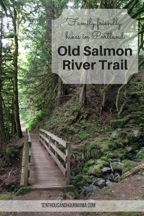 friendly hikes near me salmon river trail family friendly hike near portland
