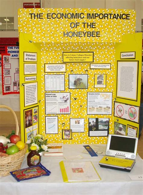 Winners Home Decor social studies fair project board layout
