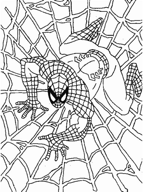 free spiderman coloring page free printable spiderman coloring pages for kids