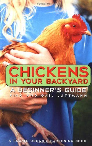 having chickens in your backyard how to build a chick brooder and have happy chicks hubpages
