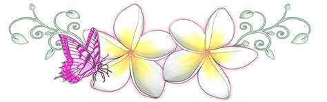 frangipani tattoo designs frangipani butterfly by 13star on deviantart