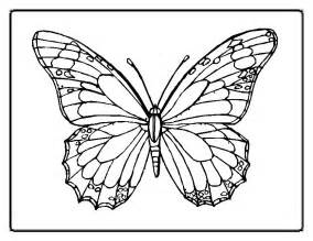 butterfly coloring pages team colors - Coloring Page Butterfly