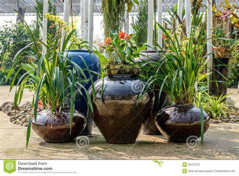 dans le jardin de poterie de terre dans le jardin photos stock image 36727973