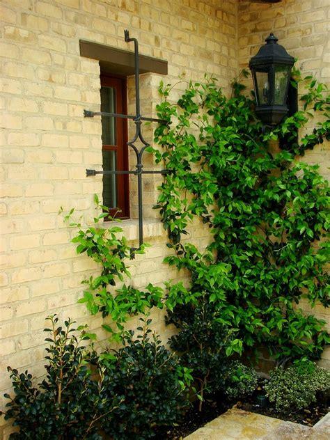 mediterranean climbing plants wrought iron window decor dining room mediterranean with