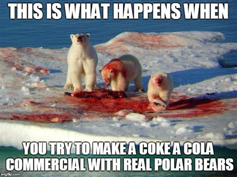 Coke Bear Meme - coke bear meme 28 images cocaine snowman occasionally
