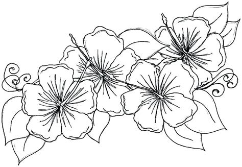 tropical leaves coloring pages hawaiian flower coloring pages best tropical on wild
