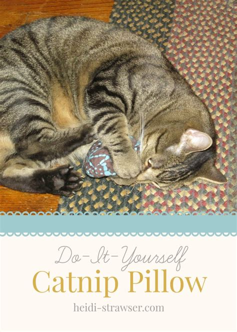 Catnip Pillows by Diy Catnip Pillow Heidi S