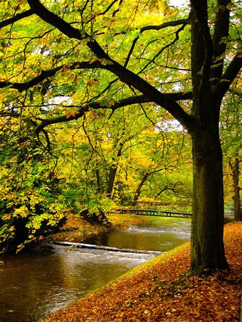 imagenes bellas de la naturaleza 100 fotos hermosas de la naturaleza im 225 genes taringa