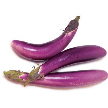 Terong Ungu F1 100benih Murah terong ungu f1 100benih purie garden