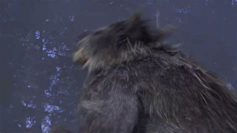 Werewolf Gif Find Amp Share On Giphy