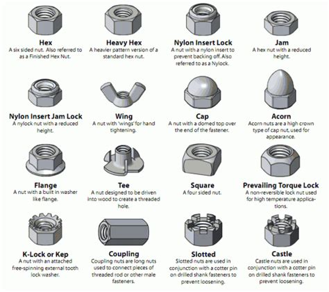 Iwear Nuts And Bolts Do You by Different Types Of Fasteners Visual Glossary Of Screws