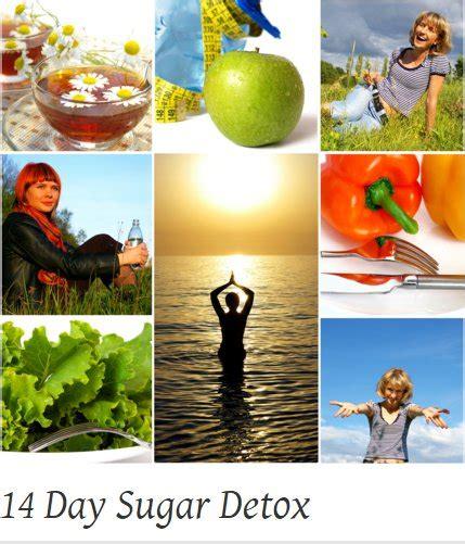 14 Day Sugar Detox by 14 Day Sugar Detox Say Goodbye To Sugar Cravings For
