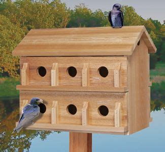 birdhouse ideas   diy birdhouse plans