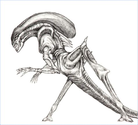 H R Giger Sketches by Aliens Concept By Cameron And Stan