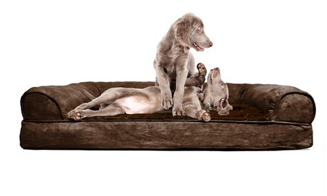 sofa style orthopedic pet bed up to 76 off on sofa style orthopedic pet bed