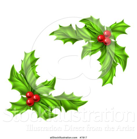 images of christmas holly leaves vector illustration of green holly leaves and christmas