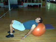 bridge core stability physioball exercises