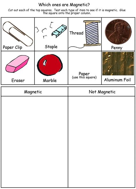 Magnets Worksheet by Magnetic Tree Map Science