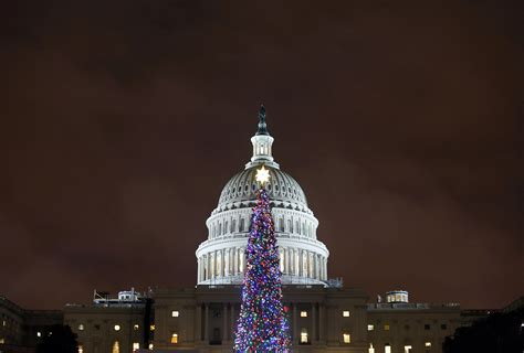 capitol christmas tree will make veterans day stop in