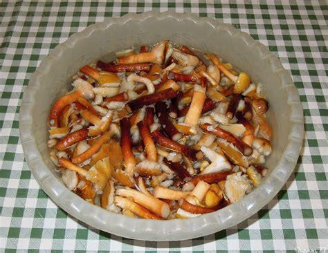 come cucinare i chiodini freschi risotto con funghi chiodini cucinare 232 un modo di