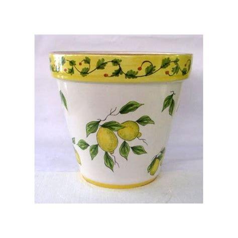 vasi per limoni vaso pianta limoni fondo bianco ceramica artistica