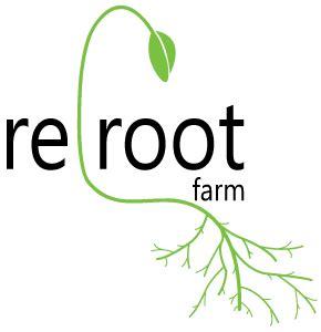Elora Organic Daily reroot