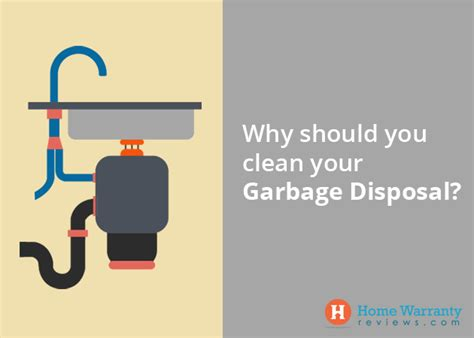 how to clean disposal how to clean a garbage disposal