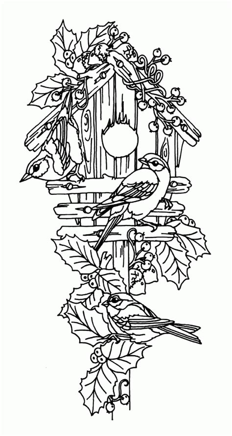 coloring pages of bird houses birdhouse coloring page coloring home