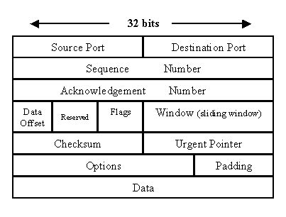 network packet layout 9 difference between tcp and udp protocol java network
