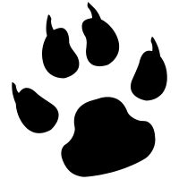 jaguar paw print pictures to pin on pinsdaddy