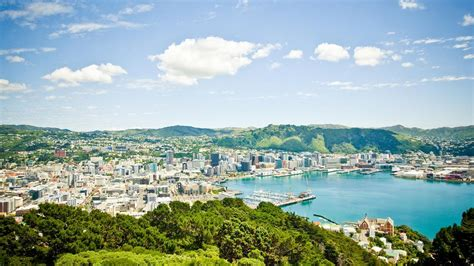 looksee wellington new york city could see tech talent drain if wellington