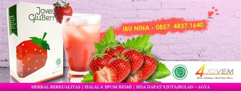 Jual Lu Sorot Di Surabaya profile perusahaan agen gluberry surabaya 0857 4837
