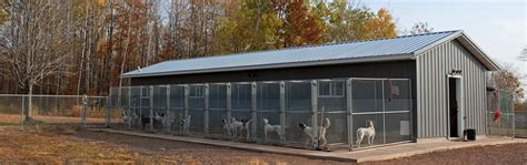 choosing outdoor dog kennel home pet care dog kennel to build care for training dogs kennel