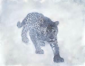 Pictures Of White Jaguars White Jaguar Animal