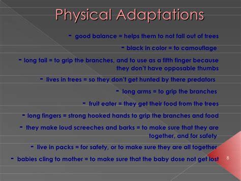image gallery monkeys adaptations