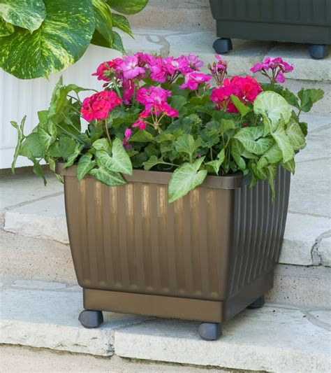Rolling Planter by Self Watering Rolling Planters 17 Quot