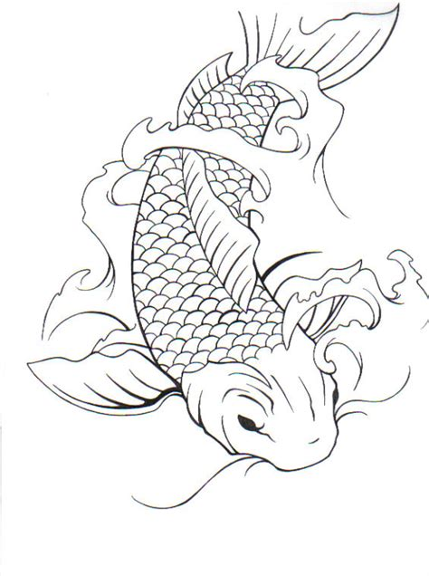 Drawing Koi Fish by Two Koi Fish Drawing