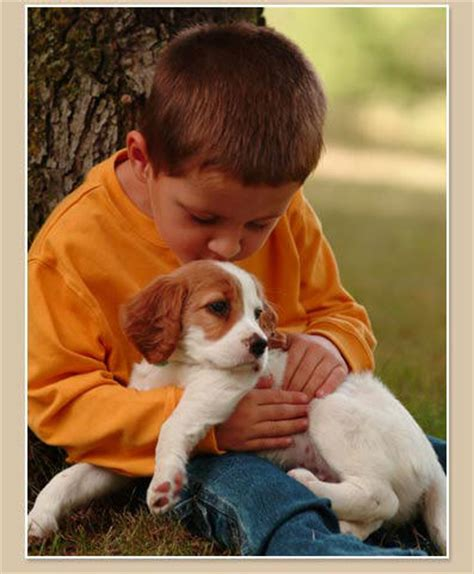 boy puppy what a boy and a puppy taught me about content marketing