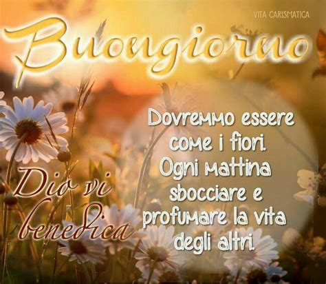 bongiorno meaning 731 best images about frasi on pinterest