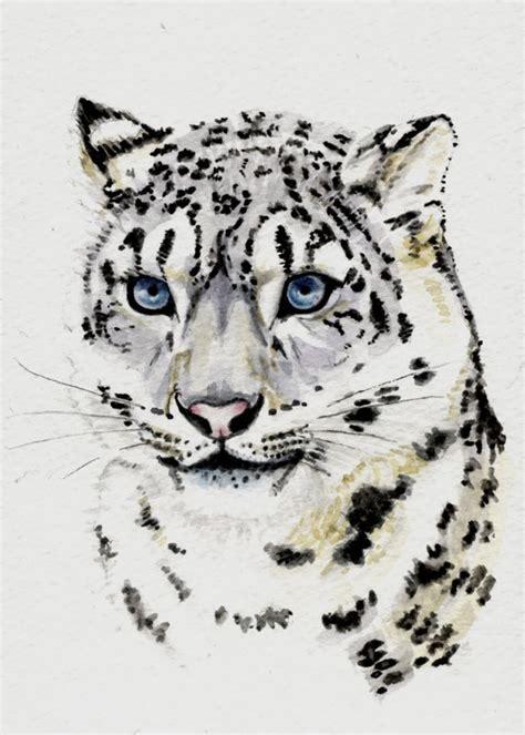 snow leopard tattoo 25 b 228 sta snow leopard id 233 erna p 229