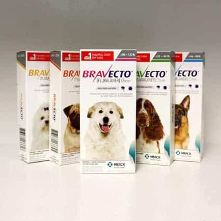 Bravecto Flea Pill For Cats - flea and tick archives pet mart pharmacy