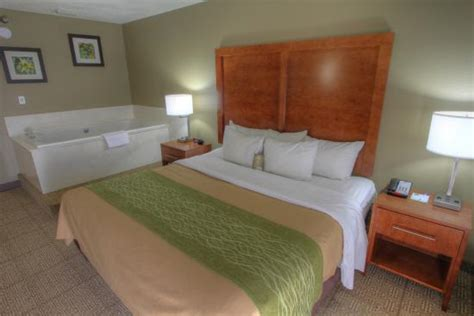 lane comfort link couples suite picture of comfort inn suites at