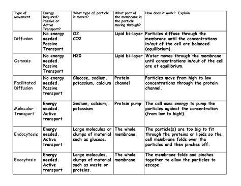 Cell Membrane Transport Worksheet by 14 Best Images Of Word Of The Week Worksheet Open Number