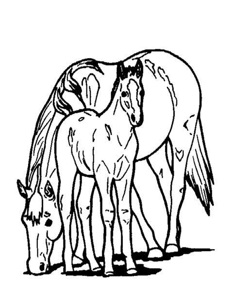 Disegni da colorare: i Cavalli