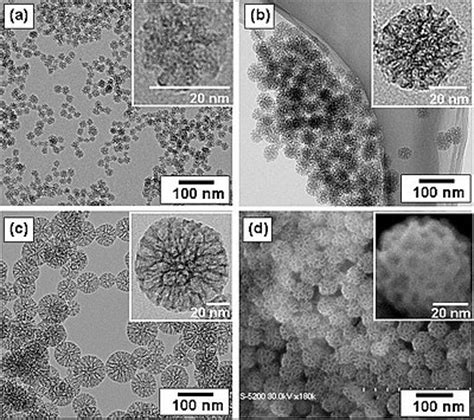 pattern formation in nanoparticle assemblies nanoparticle wikipedia