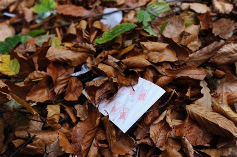 fã r was benutzt ein bd starke windb 246 en sind im wildpark in stuttgart vaihingen