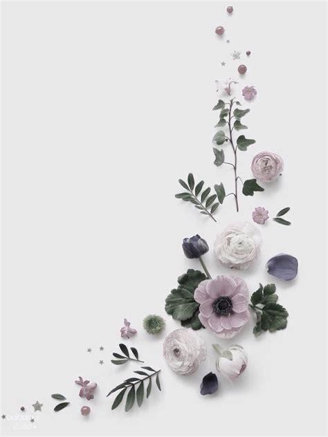 background instagram bunga pretty flower flat lay hd